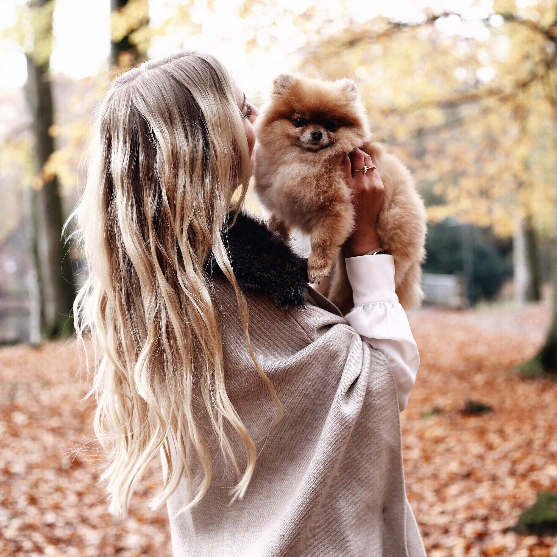 si_sichen_fall_autumn